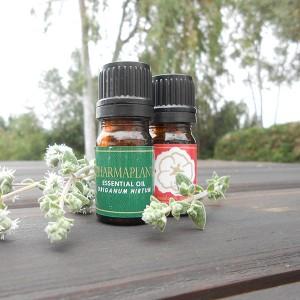 Origanum Vulgare Spp Hirtum Essential Oil